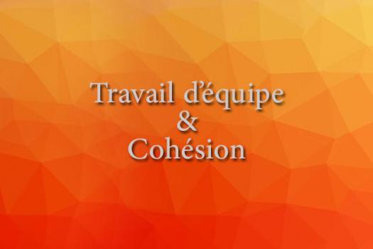 TRAVAIL D'ÉQUIPE & COHÉSION
